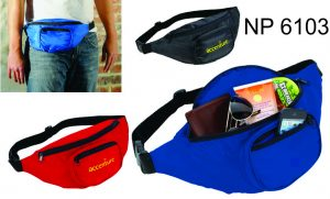 NP6103: Fanny Pack
