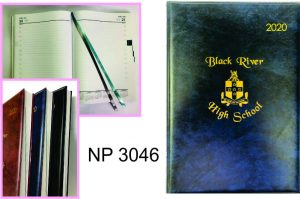 NP3046: Appointment Diary  (1 day per page)