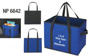 NP6642: Organizer Bag