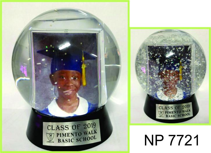 NP7721: Photo Globe
