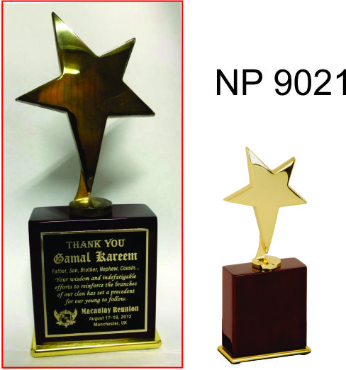 NP9021: Large Gold Star Award