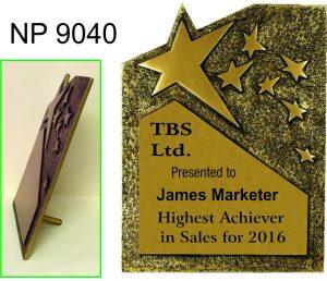 NP9040: Rising Star Award