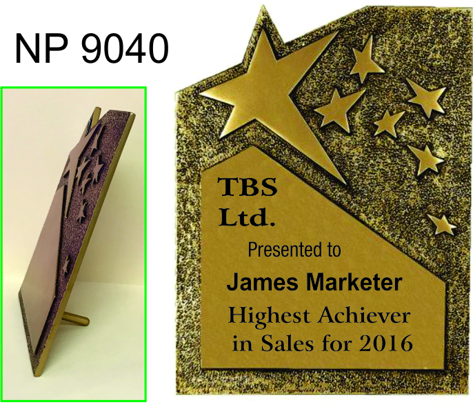 NP9040: Rising Star Award
