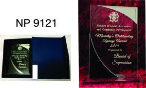 NP9121: Designer Glass Plaque
