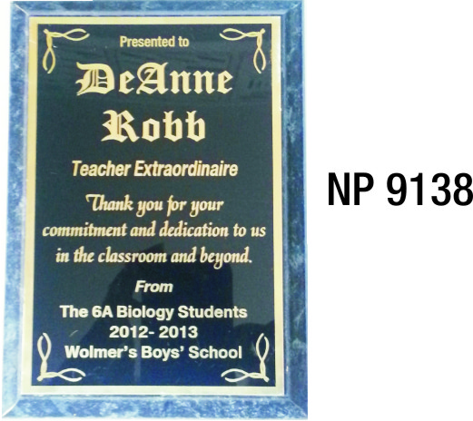 NP9138: Small Full Plate Wall Plaque