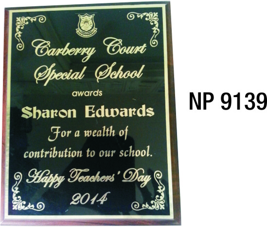 NP9139: Large Full Plate Wall Plaque