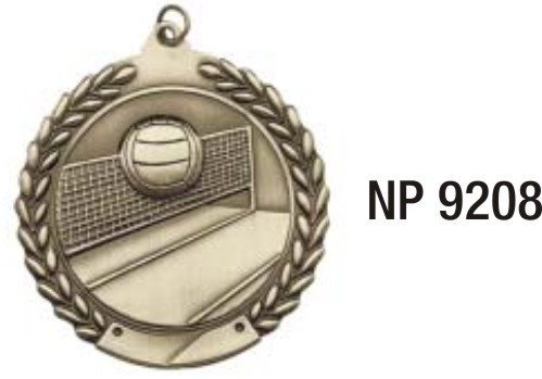 NP9208: Volleyball Medal