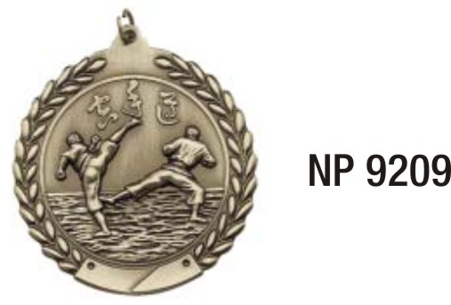NP9209: Martial Arts Medal