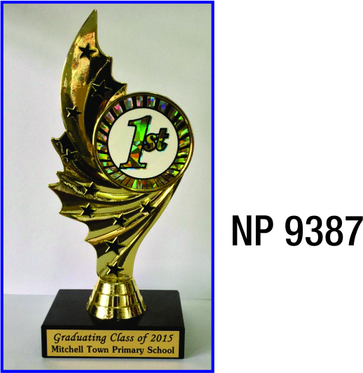 NP9387: Multi Star Trophy