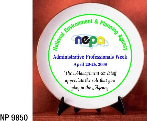 NP9850: Porcelain Plate
